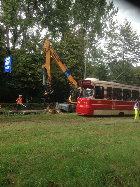 Kap 121 bomen Scheveningseweg eerder begonnen dan verwacht